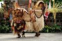 Barongaufführung in Batubulan, Bali