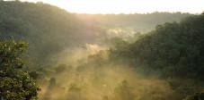 Der Nationalpark im Westen Balis