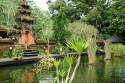 Quellteich im Pura Tirta Empul, Bali