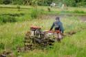 Traktor in den Reisterrassen Balis