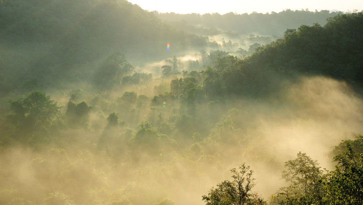 Balis Nationalpark - ein ungewöhnliches Erlebnis ...